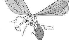 Eucalipto para ahuyentar a los mosquitos - Trucos de hogar caseros