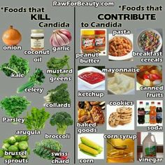 How to Use Apple Cider Vinegar for Yeast Infections Foods that Kill Candida and Foods that Contribute to Candida! [The foods on the right were my old diet (they gave me high cholesterol, too); the foods on the left now make up my new diet. Candida Diet Food List, Candida Diet Recipes, Candida Cleanse, Yeast Cleanse, Anti Candida Diet, Parasite Cleanse, Get Healthy, Healthy Life, Healthy Living