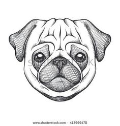 Drawing A Pug Cute Pug Portrait Of Dog In Sketch Style Hand Drawn Vector Illustration Black And White Monochrome Animal Illustration Draw A Pig Face Step By Step Cute Sketches, Animal Sketches, Animal Drawings, Drawing Sketches, Dog Sketches, Pug Illustration, Animal Illustrations, Digital Illustration, Illustrations Posters