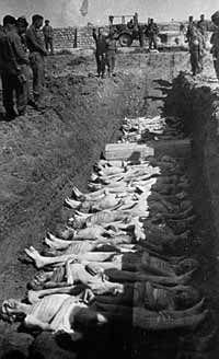 Fossa comune nel campo di lavoro di Mauthausen dove solo per causa della scarsità di misure igieniche muoiono in media 40 deportati al giorno.