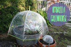 Umbrella Greenhouse. Make a pot into its own little greenhouse with an umbrella. Protect from frost and bugs while growing bigger and better plants!