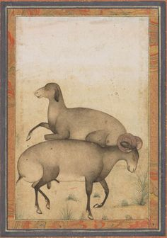 Ram and ewe in a meadow Fat-tailed sheep. Mughal India late 18th C.watercolor