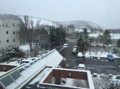 北国の初雪