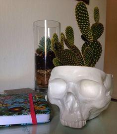 IsCool decorando mais uma casa  [Modelo vaso/cinzeiro com planta] . #iscool #skull #caveira #caveiras #coisasdecaveira #handmade #caveirismo #instaskull #curitibacool #curitiba #curitibahandmade #comprasonline #decoração #decor #curitibadecor #arte #art #gesso #cranio #calavera #suculenta #succulent #cactus #succulovers #succulentlove #amosuculentas #decoraçãodeinteriores by iscool.cwb