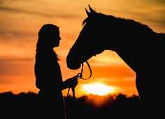 People + Horses: Purple Horse Designs | Fine Art Equine Photographer | Eastern Shore of Maryland | Delmarva | Sunset | OTTB Thoroughbred | www.purplehorsedesigns.com