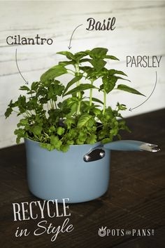 Recycling tip: Upcycle used cookware as planters for seasonal herbs. Learn more about cookware recycling by clicking on the image.