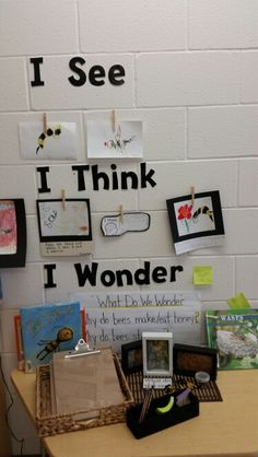 Inquiry: Kindergarten MoreBee Inquiry: Kindergarten More Today I thought I'd share a strategy I use to help my students communicate their thinking during the. Science Inquiry, Inquiry Based Learning, Preschool Science, Project Based Learning, Early Learning, Reggio Classroom, Classroom Displays, Kindergarten Classroom, Classroom Activities