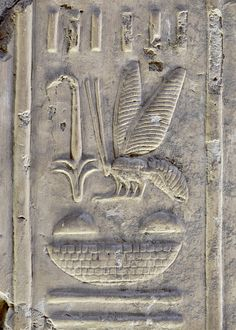 On the broad delta plains of Lower Egypt apiculture must have had a tradition and importance dating back thousands of years, and it was in the religious circles of the central delta where the symbolism of the bee developed. According to one Egyptian myth, bees were the tears of the sun god Ra.