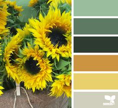 Sunny Hues - http://design-seeds.com/index.php/home/entry/sunny-hues3