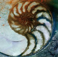 Nautilus Shell 68 - Original Abstract Watercolor Painting in Mat EBSQ
