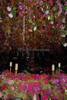 Corporate and Private Marquee Hire Marquee Hire, Food Festival, Hospitality, Birthdays, Christmas Tree, Asian, Table Decorations, Weddings, Holiday Decor