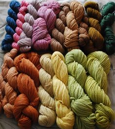 Naturally dyed yarn by Brambleberry Yarns. Present-Day Farmer Cynthia lives in Washington and has an organic dye garden to grow plants for natural dyed creations.