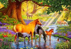 Steve Crisp, лошади