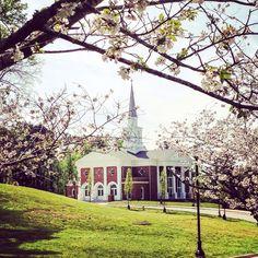 What a beautiful view. Wesleyan College Macon, GA
