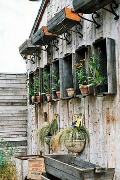 Old Boxes and Crates can be Repurposed for use in the Garden.