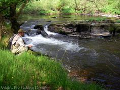 Mick's Fly Fishing Diary