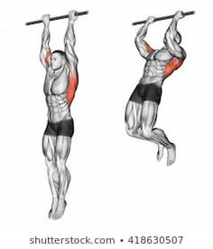Gymnastics At Home Workout Plans Pull Up Workout, Workout Routine For Men, Gym Workout For Beginners, Gym Workout Tips, Biceps Workout, At Home Workout Plan, Workout Videos, At Home Workouts, Workout Fitness