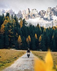 { Down The Valley } Parco Naturale Adamello del Brenta