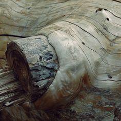 Wimpelkette - Holz - Wood