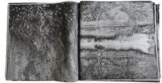 Yann Bagot / le livre des transformations