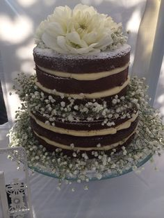 Engagement cake  chocolate naked cake decorated with baby's breath and dahlias