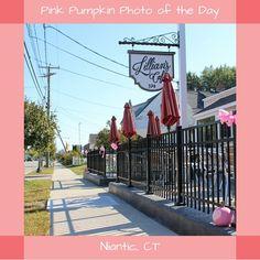 #PinkPumpkin #PhotoOfTheDay #LilliansCafe #Niantic Pumpkin Photos, Pink Pumpkins, Sidewalk, Garden, Inspiration, Shopping, Biblical Inspiration, Garten, Side Walkway