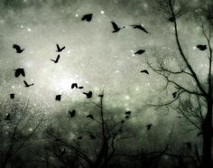 #Skywatchlife http://images.fineartamerica.com/images-medium-large/starry-night-gothic-and-crows-art-photography.jpg