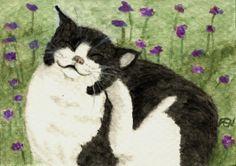 A Cat Scratching Itches by Jingfen Hwu