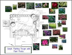 How do you create a great perennial garden design? Which perennial garden plants do you use? Here are some profession tips and pictures. Online Landscape Design, Landscape Design Software, Creative Landscape, Landscape Designs, Xeriscape Plants, Xeriscaping, Landscaping Plants, Landscaping Ideas, Pavers Ideas