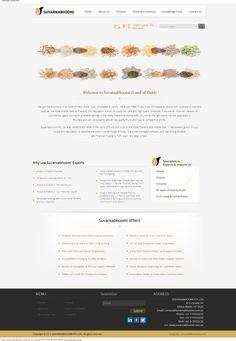 Webfin Studios Design Work - Food Import Export Industry