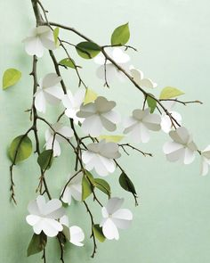 paper dogwood flowers made from white cardstock and paper petals from green card stock glued on to branches with clear craft glue