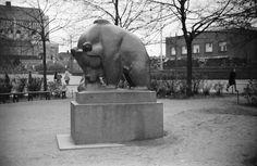 Mesikämmen muurahaispesällä, Jussi Mäntynen 1931 Helsingin kaupunginmuseo Väinö Kannisto 1945