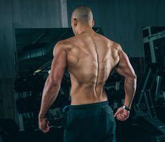5 Tips for Maximizing Your Lat Exercises