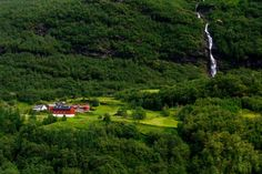 Green fields in Norway
