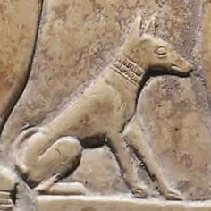 When looking at depictions of dogs in ancient Egyptian art, scholars and general… Ancient Egyptian Art, Ancient History, Art History, Ancient Egypt Animals, Dachshund, Egypt Art, Historical Art, Ancient Civilizations, African History