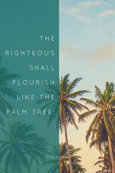 """""""The Righteous shall flourish like Palm Trees"""" -Psalm 92:12 #Catholic #IStillHaveFaithIn God"""
