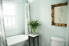 Benjamin Moore: Opal Essence ... A Country Farmhouse: Tulips & Toile