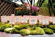wedding escort cards, idea, escort table, place cards, weddings, seating cards, card displays, wedding blog, table numbers