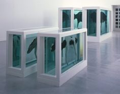 Damien Hirst - Mother and Child Divided - 1993