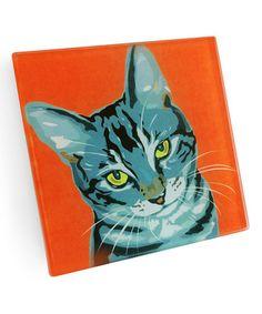 Look at this #zulilyfind! Gray Cat Coaster - Set of Four #zulilyfinds