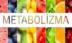 metabolizma hızı Watermelon, Health Fitness, Fat, Fitness, Health And Fitness