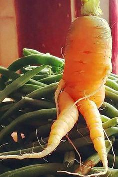 #WhatTheFork wants us to love all those ugly fruits and veggies