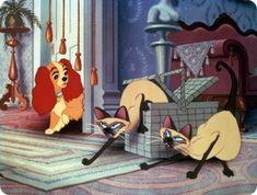 """Gatos famosos cine.Si y Am, dos gatos siameses en """"La dama y el vagabundo"""" (1955)"""