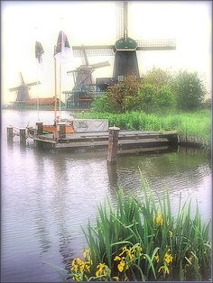 Kinderdijk in the Mist, the Netherlands ~ UNESCO World Heritage Site