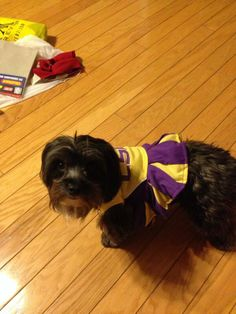 She's ready to cheer for LSU!