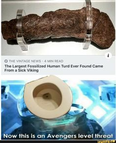 The Largest Fossnized Human Turd Ever Found Came From 3 Sick Viking Now this is on Avengers level threat - iFunny :) Funny Cute Memes, Funny Animal Memes, Hilarious, Avengers Memes, Spongebob Memes, Wholesome Memes, Daily Memes, Offensive Memes, Edgy Memes
