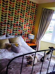 Orla Kiely wallpaper in bedroom Orla Kiely, Curtains, Wallpaper, Bedroom, Home Decor, Net Curtains, Wall Wallpaper, Room, Homemade Home Decor