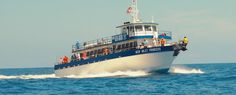 Murrells Inlet Fishing | Boat Rentals | Charter Fishing | Myrtle Beach Jet Ski Rentals