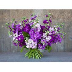 Rank & Style's Talking Top Tens - Janice Kaplan's Ten Essentials: Flowers…