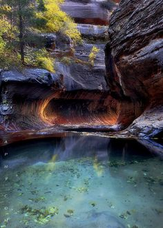 Pool of Hope. Zion National Park, Utah.